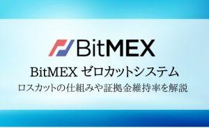 BitMEX(ビットメックス)は追証なし!証拠金維持率やゼロカットシステムを徹底解説