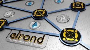 Elrondが暗号資産の新たなUXを提供するアプリ「Maiar」をリリース